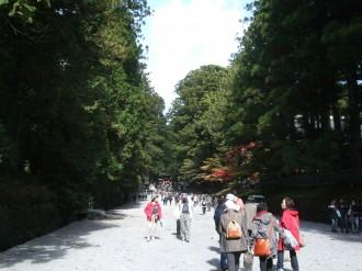 東照宮に向って緩やかな坂を登ります