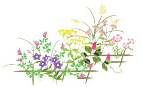 考花学イメージ画像