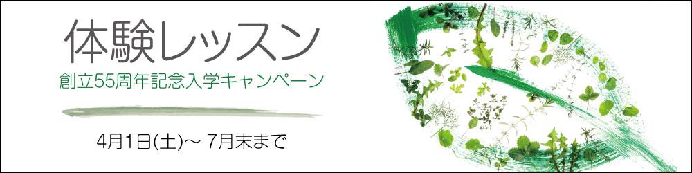 体験レッスン春の入学キャンペーン