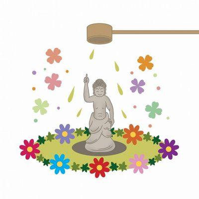 天道花(てんどうばな)、高くイメージ
