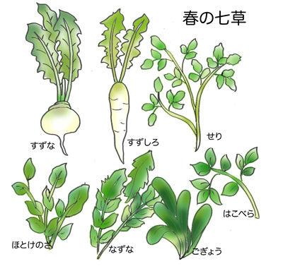 【第十三回】七草粥はいかがイメージ