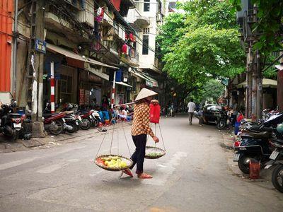 ベトナムの花、凛々しくイメージ